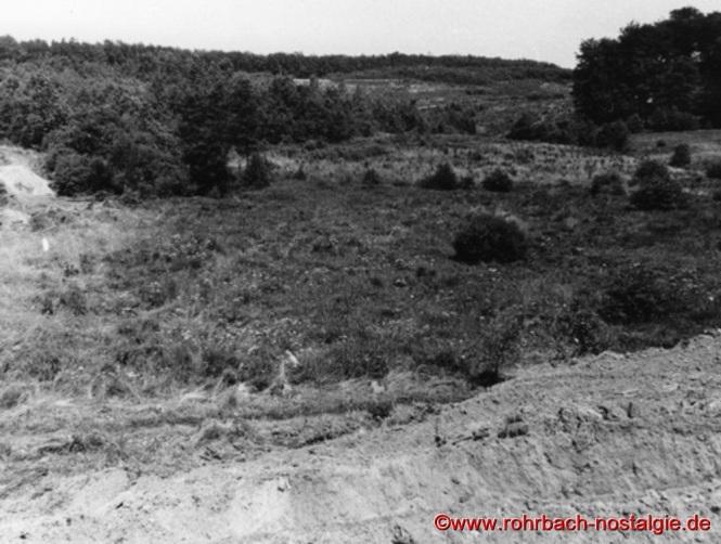 So sieht das Gebiet des heutigen Weihers Richtung Lindenbrunnen um 1968 vor Baubeginn aus