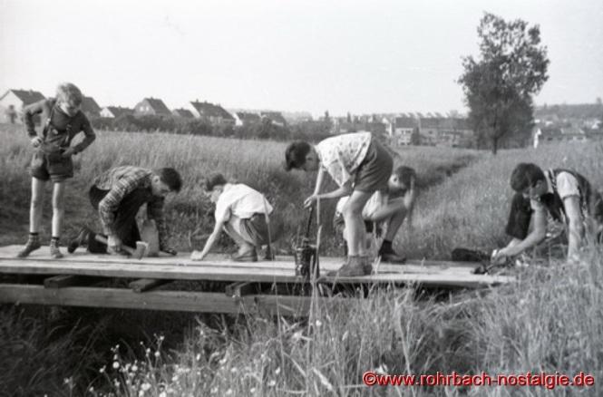 Um 1959 - Pfadfinder bauen in der Au einen Steg über den Rohrbach