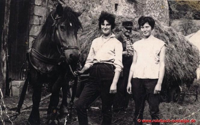 """1958 Heuernte auf dem Glashütterhof. Ludwig Pauly (""""de Glashütter Lui"""") mit seinen hübschen Töchtern Ursula, Gerlinde und seinem Pferd Fritz"""